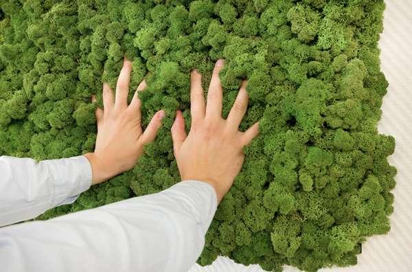 evergreen-by-freund