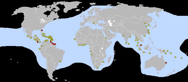 Mapa de anidación de la tortuga laúd. En Rojo marcados los puntos principales de puesta
